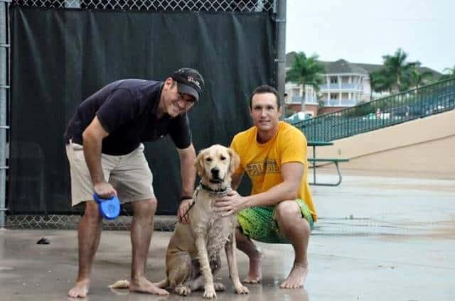 Bark N Bath Service Animals Training Florida Training