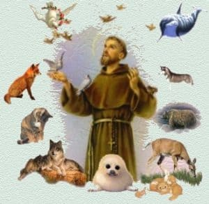 The 16th Annual Blessing of the Animals @ St. Patrick Catholic Church | Palm Beach Gardens | Florida | United States