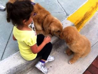 Mason meets a new friend.