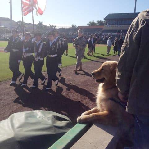 Mason is patriotic!