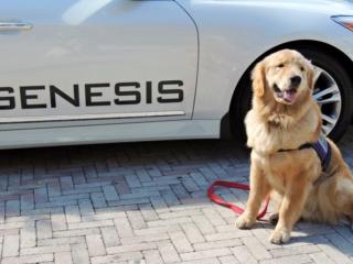 Mason & the Genesis Car
